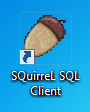 Squirrel SQL shortcut icon